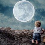Ползая, ребенок познаёт новый для него мир